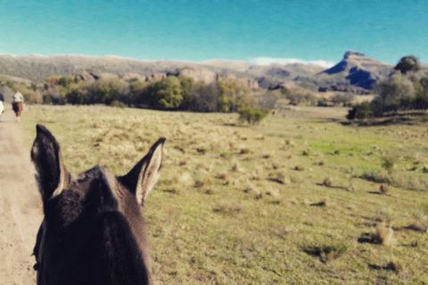 Dos Lunas Horse Riding Lodge, Estancia boutique en córdoba ongamira. Día de campo en la estancia